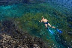 Jonge mens die in transparante ondiepe oceaan snorkelen Stock Afbeeldingen