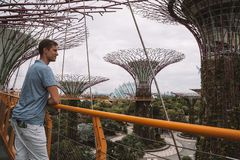 Jonge Mens die Tuinen onderzoeken door de Baai in Singapore Stock Fotografie