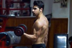 Jonge mens die zwaargewicht oefening in gymnastiek doen Royalty-vrije Stock Afbeeldingen
