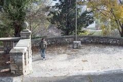 Jonge mens in een park Stock Fotografie