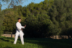 Jonge mens het praktizeren tai-Chi in het park Royalty-vrije Stock Foto