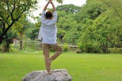 Jonge mens het praktizeren yogameditatie op de rots in mooi openluchtpark royalty-vrije stock afbeelding
