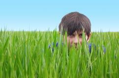 Jonge mens het verbergen in groen gras Royalty-vrije Stock Afbeeldingen