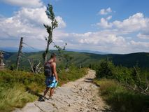 Jonge mens met een rugzak op een bosweg in de bergen Sport in de bergen Stock Foto