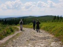 Jonge mens met een rugzak op een bosweg in de bergen Sport in de bergen Stock Afbeelding