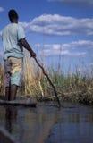 Jonge mens op een typische houten kano, Okavango-delta, Botswana stock foto's