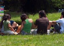 Jonge mensen bij picknick Stock Foto