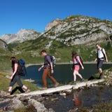 Jonge mensen die in de bergen wandelen stock afbeeldingen