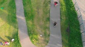 Jonge mensen die in het groene park in daglicht met een skateboard rijden De zomer stock footage