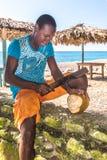 Jonge mensen scherpe kokosnoten op Playa San Rafaël Stock Afbeeldingen