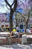 Jonge mensenrust in park Stock Fotografie