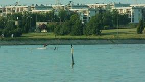 Jonge mensenwaterskiën op het meer royalty-vrije stock foto