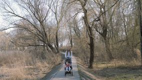Jonge moeder die met een babymeisje lopen in wandelwagen in het park stock footage