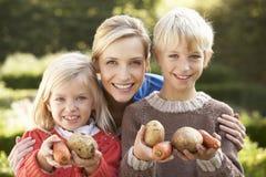 Jonge moeder en kinderen in tuin Stock Foto's