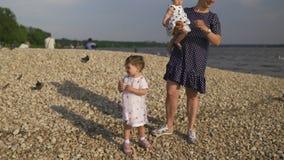 Jonge moeder met haar dochters die van het babymeisje zwaan en het kleine brood van eendjesvogels voeden bij een rivier die gesti stock videobeelden
