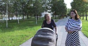 Jonge moeder met haar mamma in het park stock video