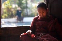 Jonge monnik die in klooster Myanmar leren Royalty-vrije Stock Foto