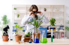 Jonge mooie biotechnologiechemicus die in het laboratorium werken royalty-vrije stock afbeelding