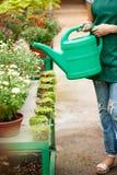 Jonge mooie bloemist het water geven bloemen over blury openluchtachtergrond Royalty-vrije Stock Foto's