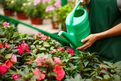 Jonge mooie bloemist het water geven bloemen over blury openluchtachtergrond Royalty-vrije Stock Foto