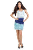 Jonge mooie dame in blauwe kleding stock afbeelding