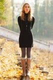 Jonge mooie dame in een de herfstpark stock afbeeldingen