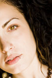 Jonge mooie groene eyed vrouw Stock Foto's