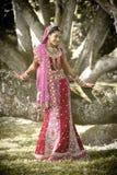 Jonge mooie Indische Hindoese bruid die zich onder boom bevinden Royalty-vrije Stock Afbeeldingen