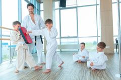 Jonge, mooie, succesvolle multi ethische jonge geitjes in karatepositie Stock Foto