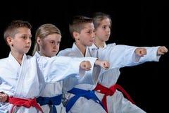 Jonge, mooie, succesvolle multi ethische karatejonge geitjes in karatepositie royalty-vrije stock foto
