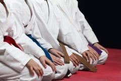 Jonge, mooie, succesvolle multi ethische karatejonge geitjes in karatepositie Royalty-vrije Stock Foto's