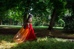 Jonge mooie traditionele Indische vrouw in aard Stock Foto's
