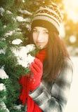Jonge mooie vrouw achter sneeuw behandelde pijnboom stock afbeeldingen