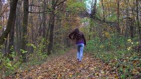 Jonge, mooie vrouw die met lang haar in het de herfstbos lopen stock videobeelden
