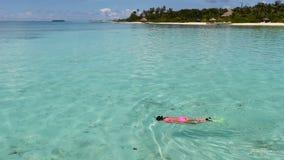 Jonge mooie vrouw die in tropisch water op vakantie snorkelen stock footage