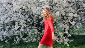 Jonge mooie vrouw die van geur van bloeiende boom op een zonnige dag genieten stock video