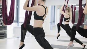 Jonge mooie yogivrouwen die luchtyogapraktijk in rode hangmat in geschiktheidsclub doen stock video