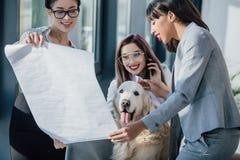Jonge onderneemsters die met blauwdruk werken terwijl het spelen met hond in bureau Stock Foto