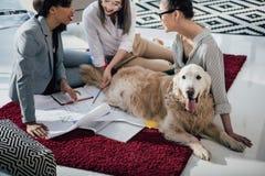 Jonge onderneemsterzitting die op tapijt met hond op blauwdrukken liggen stock foto's