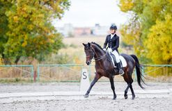Jonge ruitervrouw op paard op de dressuurconcurrentie Stock Fotografie
