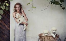Jonge schoonheid en puppy Stock Foto