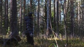 Jonge slanke vrouwengangen in het bos met een hond van Airedale Terrier stock footage