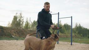 Jonge sportieve mens opleiding met zijn bullmastiffhond in openlucht bij park en het voorbereiden van zijn huisdier voor de concu stock videobeelden