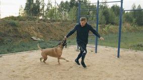 Jonge sportieve mens opleiding met zijn bullmastiffhond in openlucht bij park en het voorbereiden van zijn huisdier voor de concu stock video