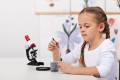 Jonge student in van de de klassenstudie van de biologiewetenschap de kleine installaties stock foto's