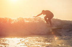 Jonge surfer het praktizeren branding in het strand van Manhattan, Californië stock fotografie