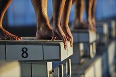 Jonge swimmmer op het zwemmen begin royalty-vrije stock foto's