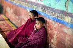 Jonge Tibetaanse Boeddhistische monnik die in Thiksey-gompa bidden (Boeddhistisch m Stock Foto's