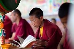 Jonge Tibetaanse Boeddhistische monnik die in Thiksey-gompa bidden (Boeddhistisch m Stock Afbeeldingen