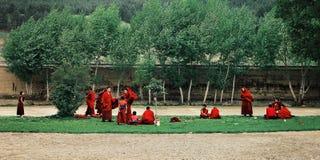 jonge tibetan boeddhistische monniken die zich op een klein grasrijk gebied tijdens stormachtige winden verzamelen royalty-vrije stock foto